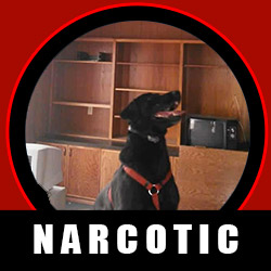 Narcotic Detector Dog Certification
