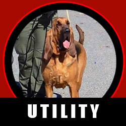 Police Utility Dog Certification